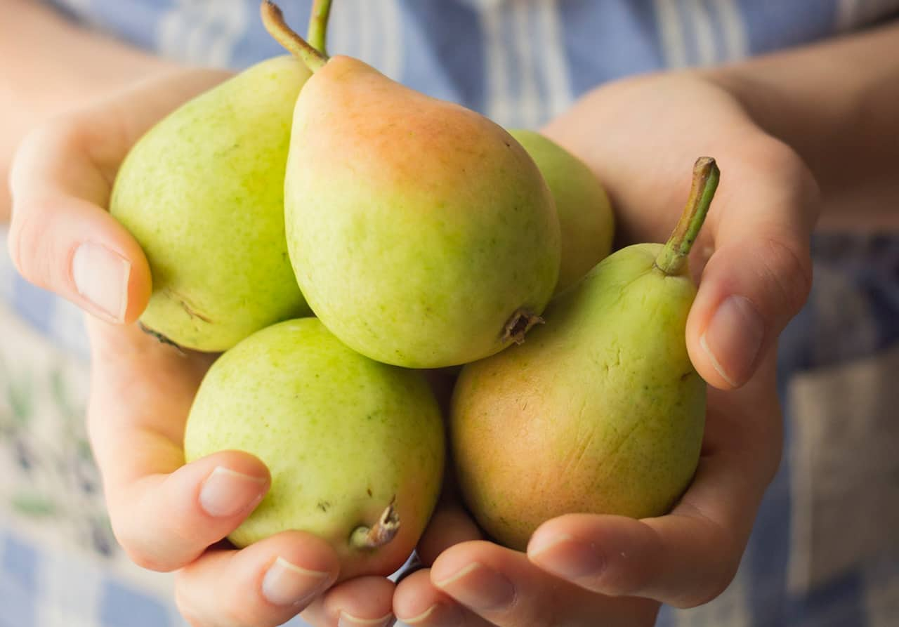 delicious pear fruits