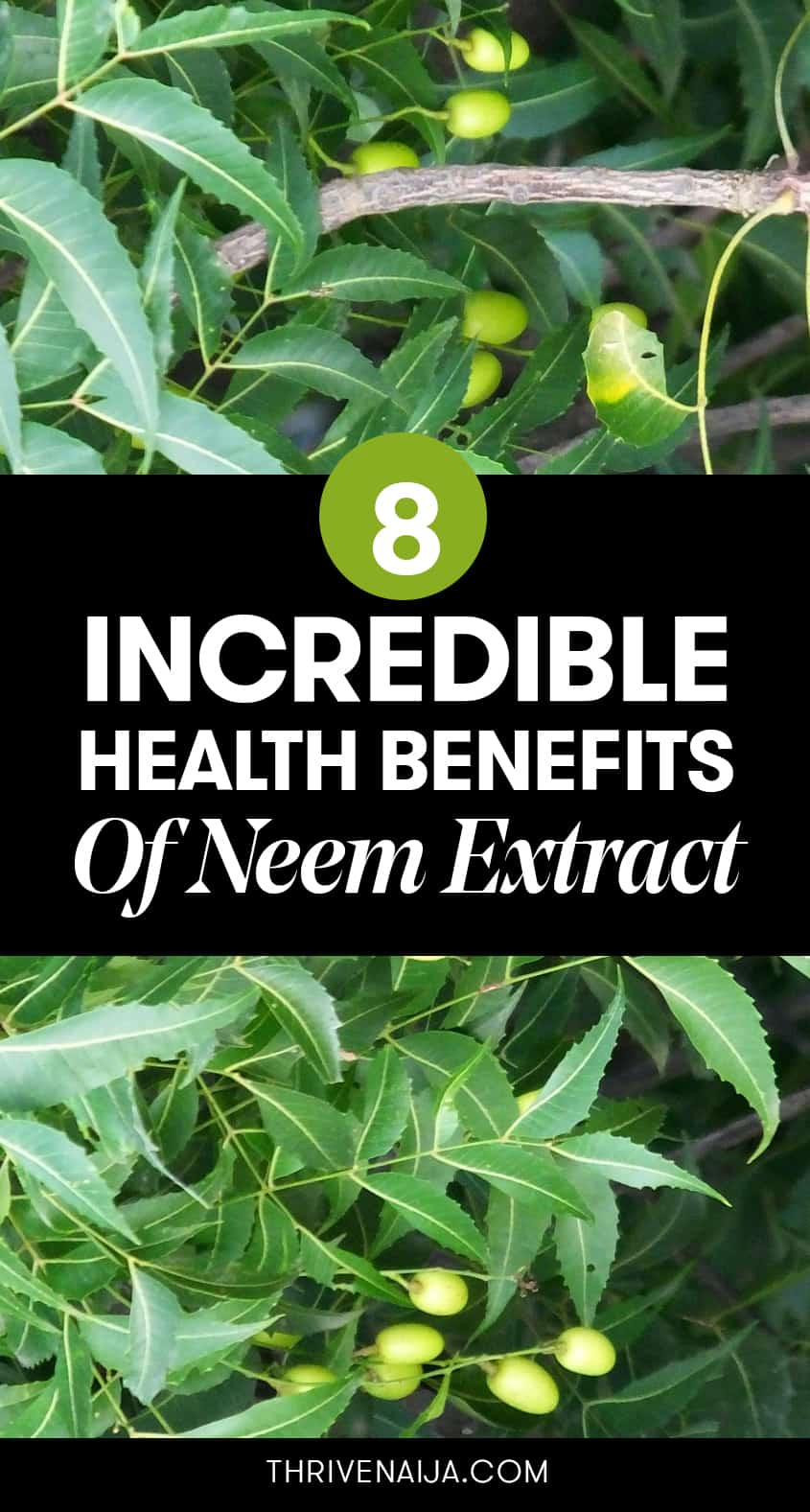 health benefits of neem extract