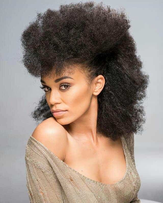 Natural hair hairstyle