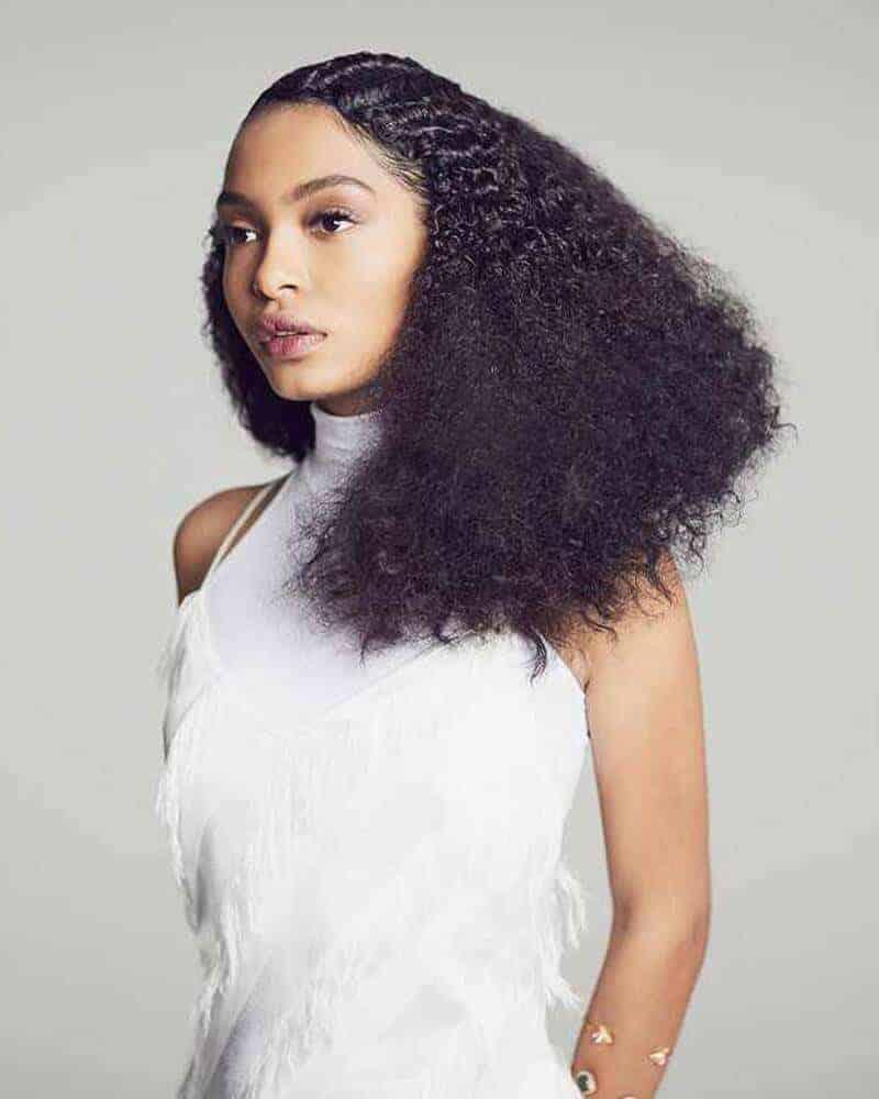 natural hair hairstyle
