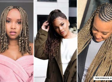african braids hairstyles pictures 2020