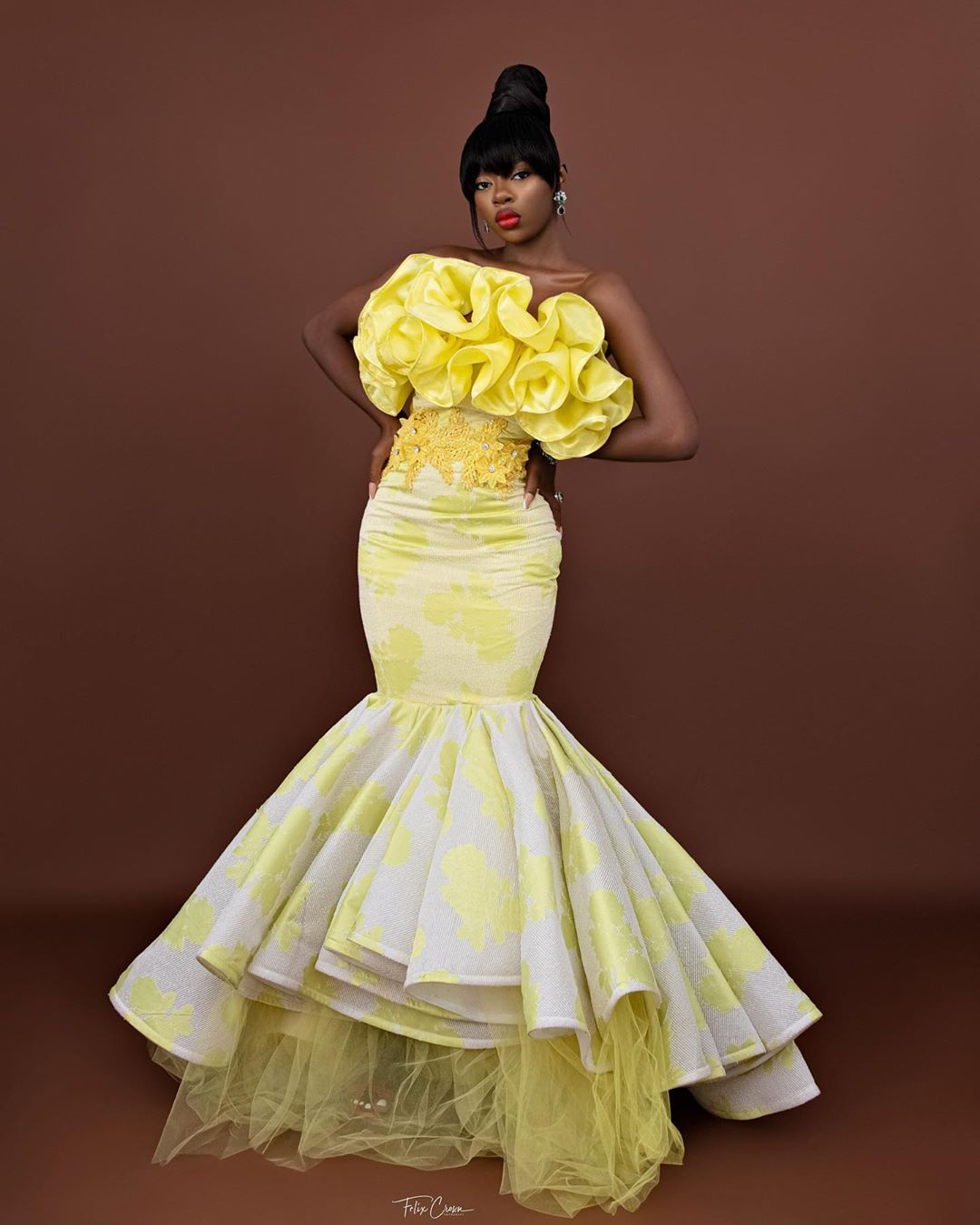 Diane Russet Ball Gown Looks Fitting For All Events